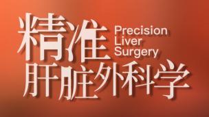 精准肝脏外科学