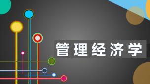 管理经济学(陈章武)
